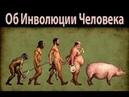 Инволюция Души Татьянин час