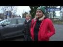 Житель Зеленогорска натравил своего стаффорда на любимую горожанами собаку Алису