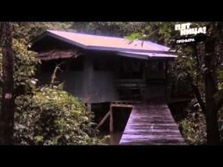 Орел и Решка Борнео 8 сезон 5 серия (107) HD