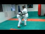 DrobyshevskyKarateSystem:GOJUSHIHO SHO-Bunkai-11-Morote Kaishu Gedan Uke-Knife Defense