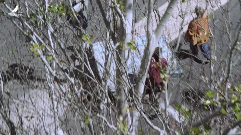 Competição Nacional 2018 - Trailer - Amor, Avenidas Novas - Duarte Coimbra