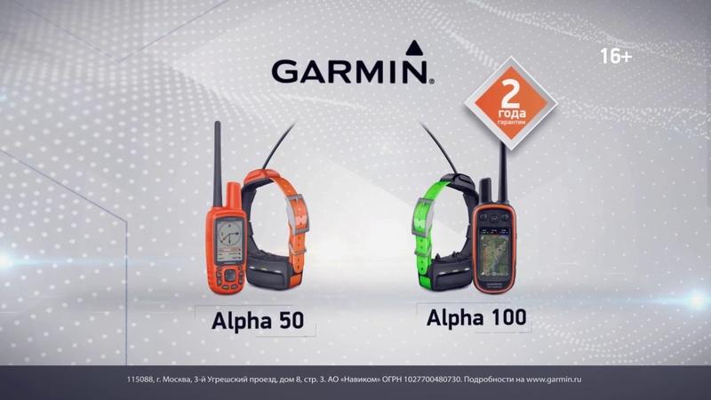 Garmin Alpha 100 и Alpha 50 GPS для слежения за собаками