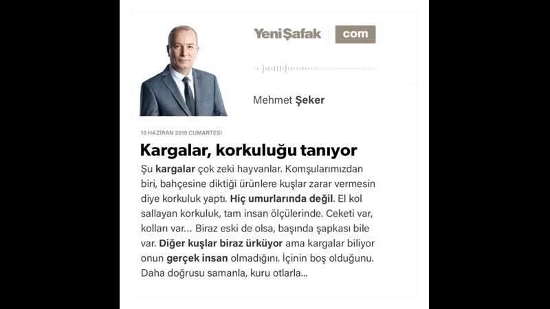Mehmet Şeker - Kargalar, korkuluğu tanıyor - 15.06.2019