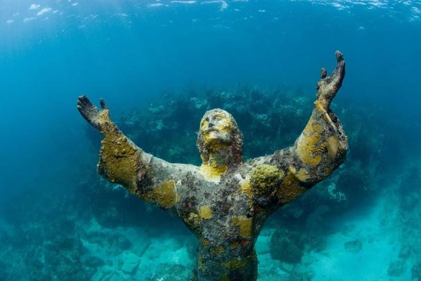 10 неимоверных скульптур и статуй в подводном царстве Тщательно и с любовью созданные скульптуры и красивые статуи вдруг оказались под водой. В отличие от своих наземных собратьев, подводные