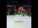 Выход на ринг Конора Макгрегора против Хабиб Нурмагомедов UFC 229