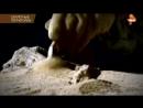 Секретные территории. Великая древняя Тартария - предок славян
