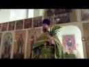 2018 04 01 проповедь в Вербное воскресенье протоиерея Ярослава 320х240