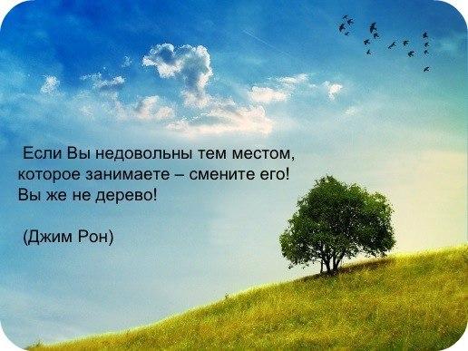 http://cs402718.userapi.com/v402718368/218a/2qZlLUSrJhI.jpg