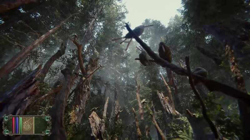 The Elder Scrolls VI Valenwood (READ THE BLOODY DESCRIPTION BEFORE COMMENTING)