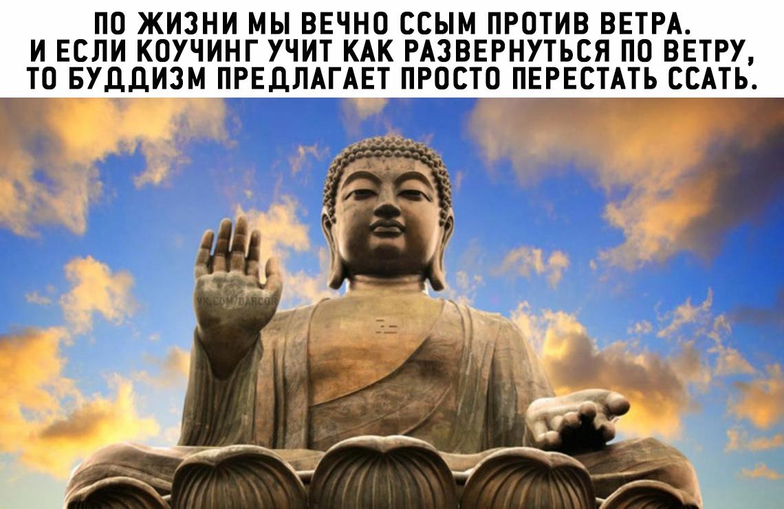 https://pp.userapi.com/c847017/v847017962/f7812/m90yKFZ07sM.jpg