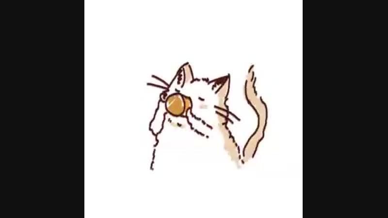 Кот попивает чай.. с