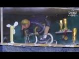 Новую миниатюру Ивана Серого «Велосипедист» установили в веломастерской Игоря Бабина в Нижнем Новгороде
