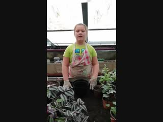 Юнный ботаник!