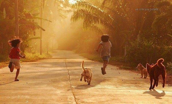 ПРИТЧА. Счастье Однажды три брата увидели Счастье, сидящее в яме. Один из братьев подошел к яме и попросил у Счастья денег. Счастье одарило его деньгами, и он ушел счастливый. Другой брат попросил красивую женщину. Тут же получил и убежал вместе с ней вне себя от счастья. Третий брат наклонился над ямой: — Что тебе нужно? — спросило Счастье — А тебе что нужно? — спросил брат. — Вытащи меня отсюда, — попросило Счастье. Брат протянул руку, вытащил Счастье из ямы, повернулся и пошел прочь. А…