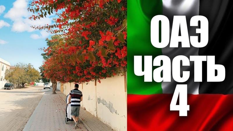 ОАЭ НА АВТО - Часть 4. Что делать в Шардже The Global Village   UAE