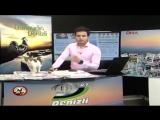 Stray Cat Interrupts Live TV Show in Turkey