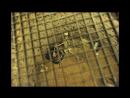 TABUBRUCH 01 - Todesstrafe und Hinrichtungen