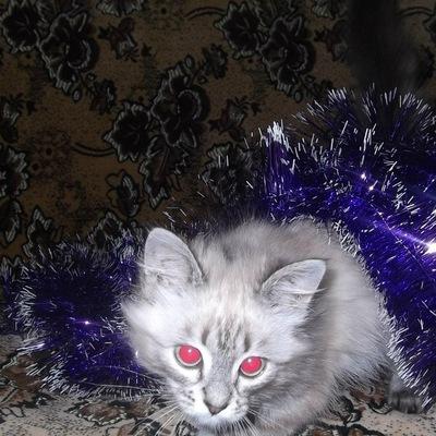 Софийка Зайцева, 9 декабря 1999, Красноярск, id223791503