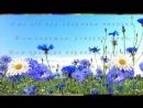 С Днем рождения в июне Самое красивое поздравление Видео открытка.mp4