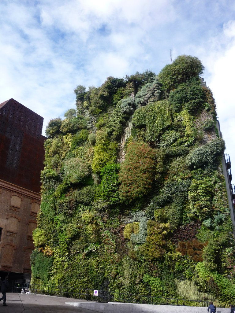 Green Wall from Patrick Blanc