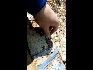 Обзор ножа Финка НКВД разбор