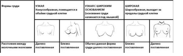 Почему у женщин одна грудь меньше другой