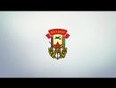 ДОСААФ Нижнекамск логотип