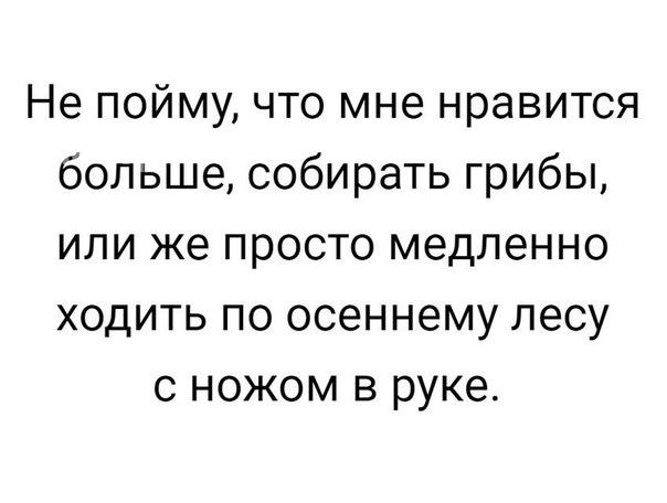 https://pp.userapi.com/c543106/v543106349/1e329/YXOlWEiqGI4.jpg