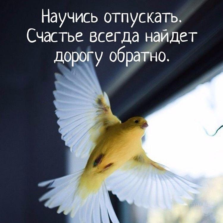 https://pp.vk.me/c543106/v543106769/27ded/JeassS55UEo.jpg