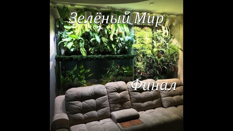 Аквариумпермь рф №4 Зелёный мир Аквариум фитостены Ваби Куса Неорегилии Стабилизированный мох