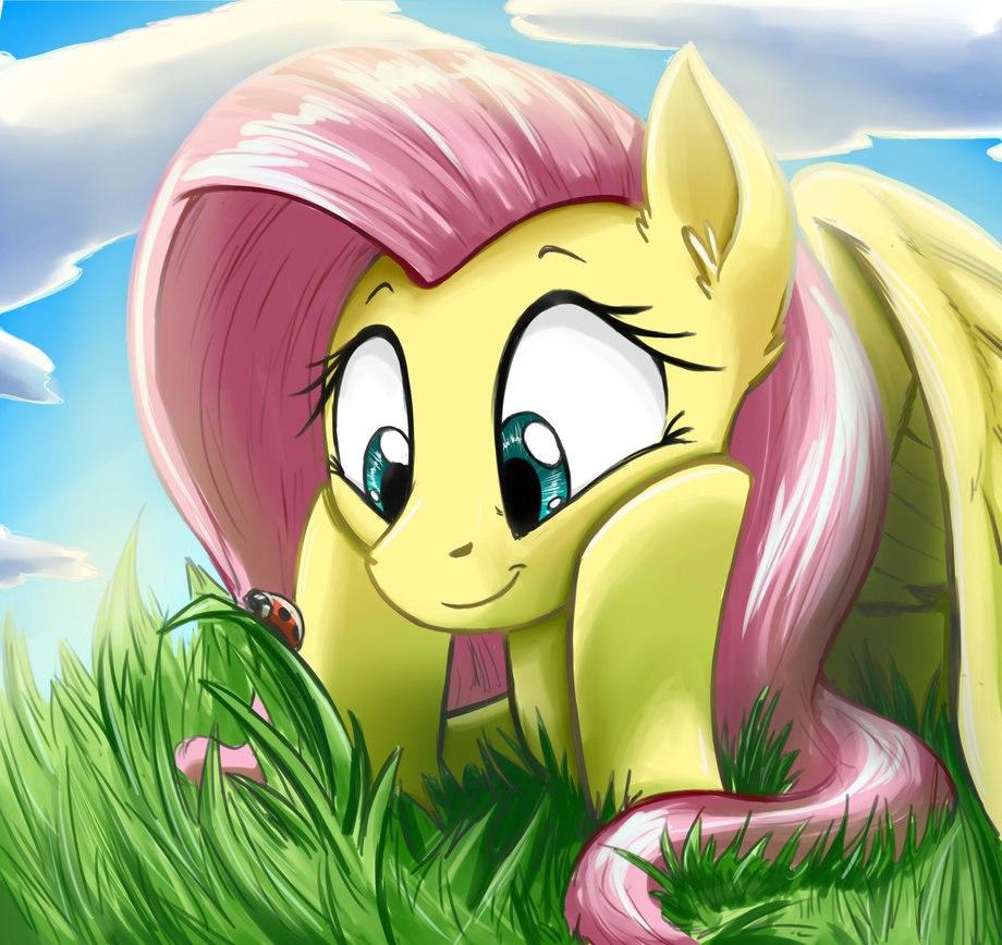 Дружба Это Чудо Зимние Наряды 2 (My Little Pony Moda 2)