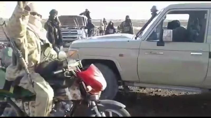 """Недавно опубликованное видео показывает боевиков Исламского государства*(запрещено в России) в """"Великой Сахаре» (ISGS)."""