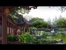 Чай Тяньши (Tiens). Чай для здоровья императора