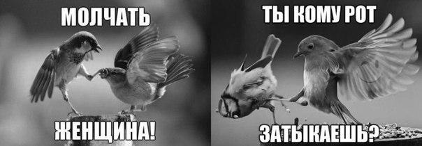 """Путин отказался обсуждать с Порошенко """"диверсию"""" в Крыму, - Марчук - Цензор.НЕТ 9309"""