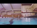 Алладин в бассейне.mp4