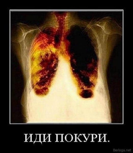 Ярославль бросить курить