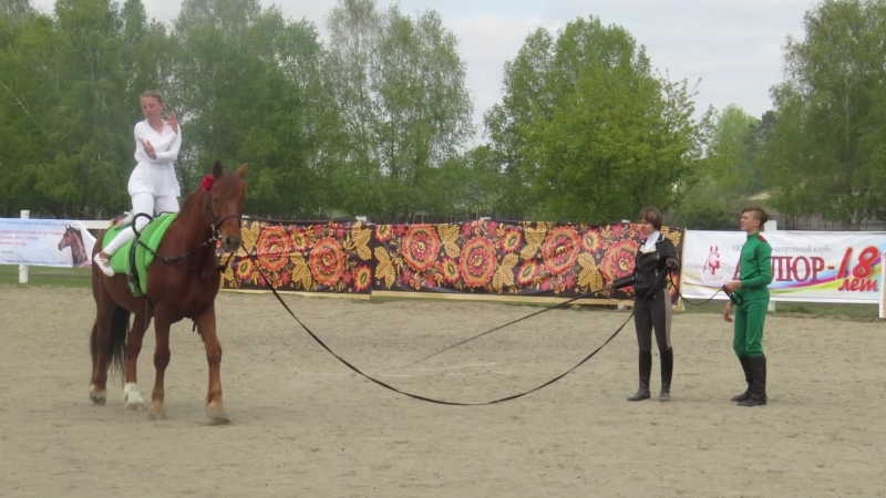 Нежность и конь Буран