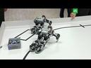 Путину показали отжимающихся роботов