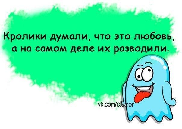http://cs608323.vk.me/v608323626/57a2/VsaG6LxyaKI.jpg