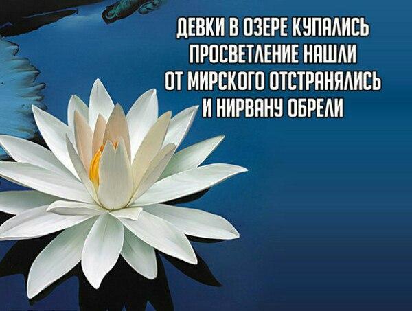 https://pp.vk.me/c615824/v615824049/4266/YVkfa9Aa2tU.jpg
