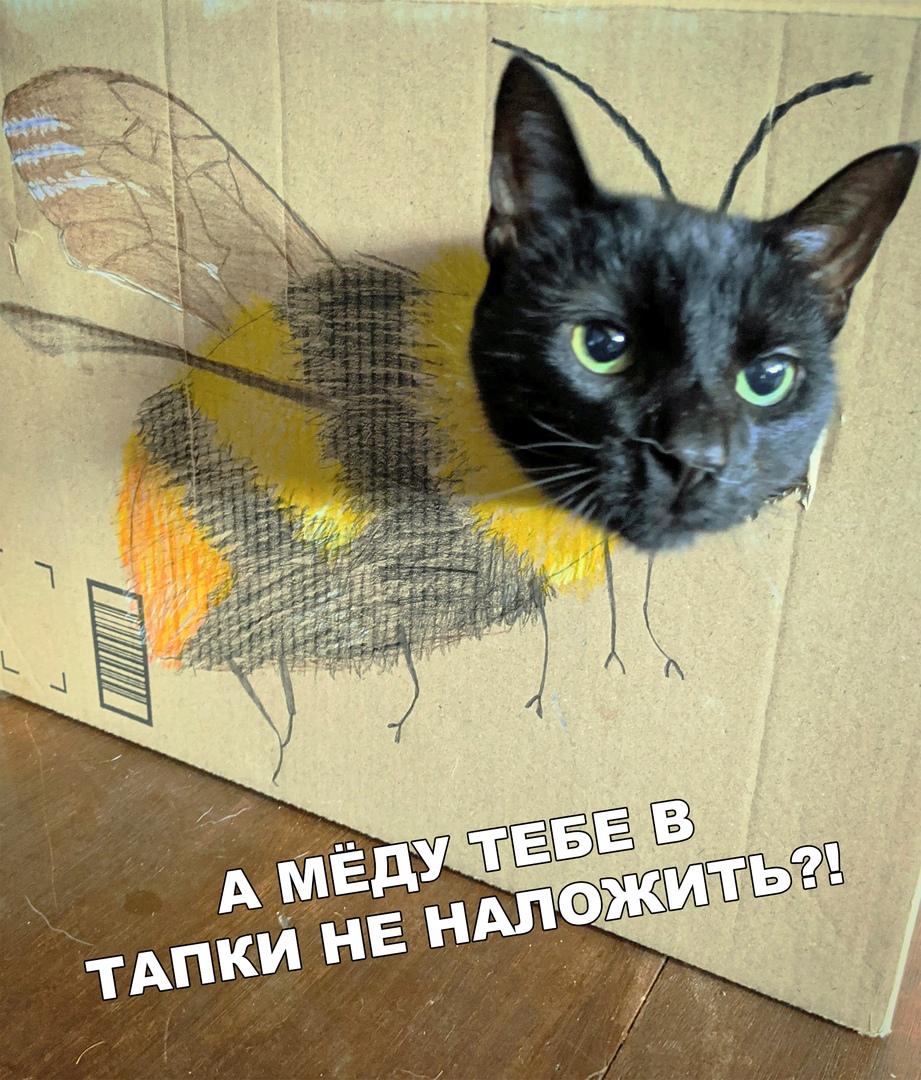 Сердитая пчёлка