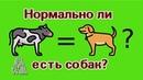 Собаки равны коровам? (Earthling Ed)
