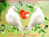 doc416011072_492460806.mp4