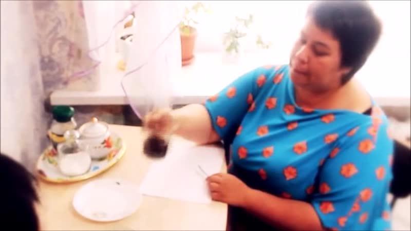 Динара Сафиулина: - ЧЕМ ПРИВЛЕКАТЕЛЕН СЕТЕВОЙ ИНВЕСТИЦИОННЫЙ ПРОЕКТ