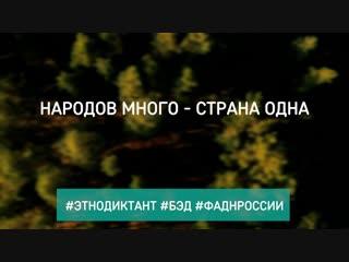 БЭД_01