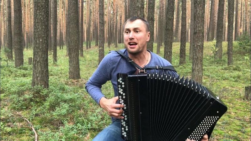 БАЯНИСТ РВЁТ ДУШУ Хит группы Король и Шут Лесник на баяне