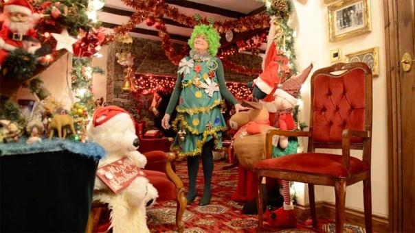 Бабка настолько помешана на Рождестве, что потратила на украшения $38000 и ставит елку в августе