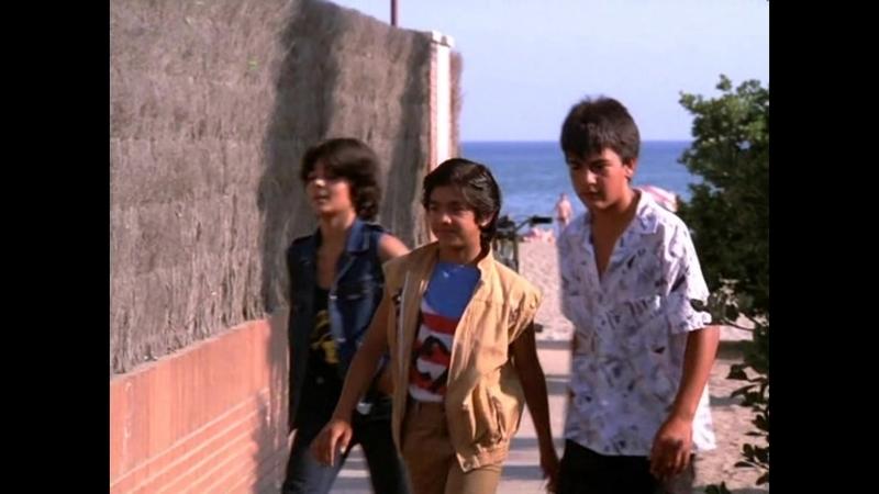 Я, Бакилья / Yo, «El Vaquilla» (1985) (боевик, драма)