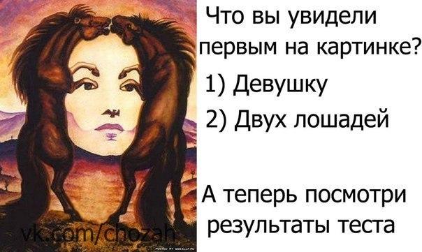 Юмор Шрёдингера | ВКонтакте