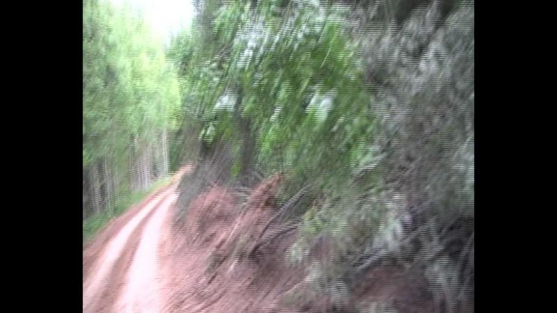 В джунгляхъ Амазонки